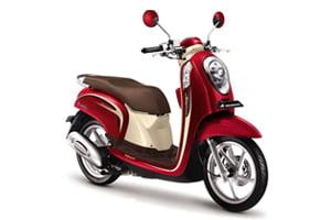 scoopy--bali-motorbike-rental
